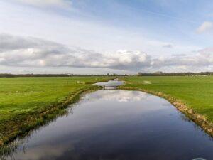 weiland natuur polder
